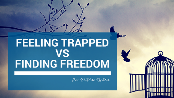 Finding freedom in business